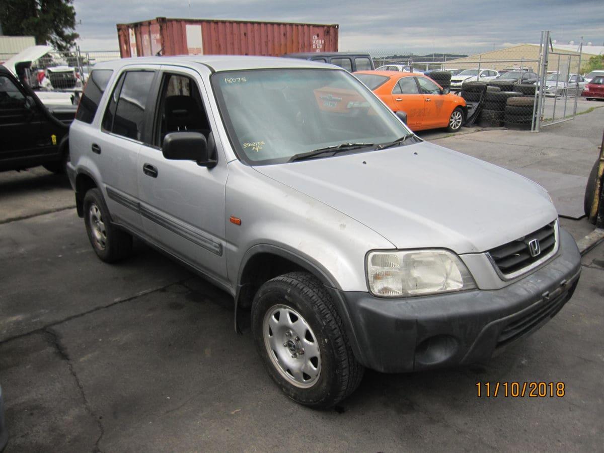 IMG 3006